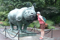 Bronx Zoo - Lisa and Rhino