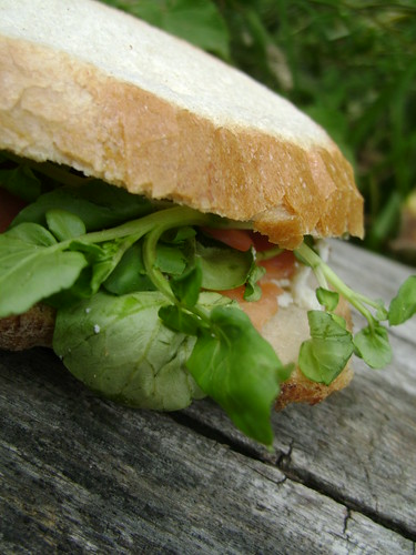 Smoked Salmon and Watercress Sandwich