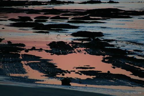 Tahunanui Coastline - early morning