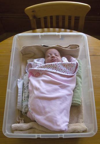 Baby in a Bin