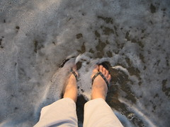 Happy Feet Summer 2008!