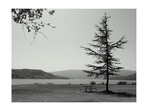 Lake Cassitas