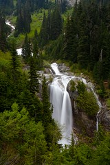 Grand Waterfall (Nick Carver Photography) Tags: trees plants usa motion tree green nature water vertical pine creek forest river landscape outdoors landscapes waterfall washington spring movement stream dennycreek calm rivers serenity pacificnorthwest serene streams lush desolate westcoast snoqualmie damp creeks dennycreektrail mtbakersnoqualmienationalforest ncpfineartprint