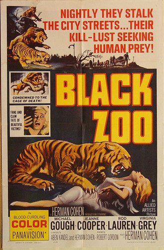 black_zoo_mp