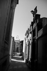 Main Street, Recoleta