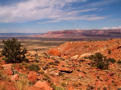 Arizona Landscape (saxonfenken) Tags: red arizona motif clouds landscape geotagged bush rocks shadows explore superhero thumbsup 999 e500 bigmomma gamewinner 6983 mywinners favescontestwinner a3b september2008 friendlychallenges navahorestervation herowinner pregamewinner 6983land