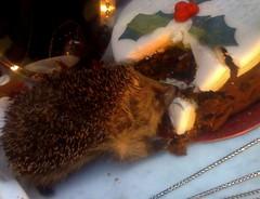 christmas thief (estherase) Tags: uk london cake shop phonecam geotagged findleastinteresting display holly hedgehog shopwindow phonecamera guesswherelondon iphone emssimp gwl newburghstreet guessedbylittleswills geo:lat=51513428 geo:lon=0138627