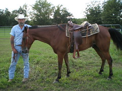 012 Gabe and his Cowboy (OlBlue1) Tags: horse cowboy friendship trust oldcowboy brownhorse cowboyandhorse