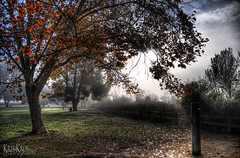 alone in the park (Kris Kros) Tags: photography high bravo dynamic range hdr kkg kkgallery