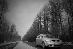 Winter Lane (Hans van Reenen) Tags: auto trees bw tree car germany deutschland perspective fav20 lane fav30 underway niederrhein kleve pkw fav10 volkswagenpolo gx100 20081125 nierswalde