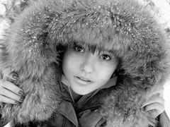 B&W portrait (Vlada...) Tags: bear winter snow beautiful face up look eyes europe little gorgeous castel tedy chisinau moldova vlada peles