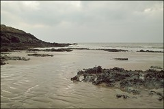 a tale of tides (_bohemian_) Tags: ocean seaweed cold beach rock sand december sigma barry barryisland dp1