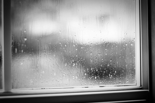 new year's rain