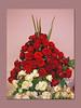 Rosenschau Steinfurt (Martin Volpert) Tags: flower fleur rose deutschland hessen flor pflanze rosa blumen roos blomma rosen gül blume fiore blüte blomst rós rozen virág lore bloem steinfurt gesteck friedberg blóm çiçek floro roser kwiat flos ciuri kvet arrosa kukka rozes cvijet vrtnica flouer bláth cvet zieds ruusut õis trandafir floare róza ruža rózsa blome rozo žiedas rosenschau rože ruže mavo43 rosenschausteinfurt rossläktet