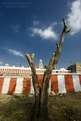 V (@k@sh) Tags: life canon temple 350d drive 10 board bangalore silk sigma v karnataka 1020 hosur akash 10mm chandrachoodeshwarar