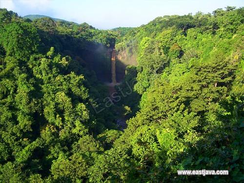 Coban Baung Waterfall - Pasuruan - East Java