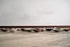 (kirstie van noort) Tags: colour detail colors ceramic design ceramics datum eindhoven number cups glaze numbers clay data dishes van bowls klei fragile porcelain kirstie wellbeing designacademy nummers reeks porselein schalen schaaltjes noort designacademie serienummer glazuur colorrange designacademyeindhoven vannoort kirstievannoort kleurenreeksen kupjes manandwellbeing kirstievn wellbeingdesignacademyeindhoven wellbeingdesignacademie designacademywellbeing