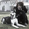 Kelly BlowUps & Hetfield @ Bourne Hall (Rob Mirage) Tags: dog husky kelly siberian hetfield bieyed theblowups wwwmyspacecomtheblowups kellyblowups
