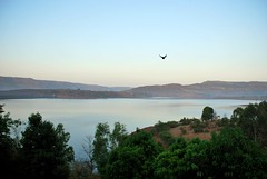 (Sushil Chhugani) Tags: travel sunset india lake bird fly escape horizon hills maharashtra sushil kamshet chhugani