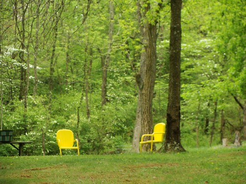 Two Yellow Chairs
