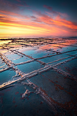 Tessellated Pavement, Eaglehawk Neck, Tasmania, Australia (Matthew Stewart | Photographer) Tags: ocean sea water port sunrise arthur rocks australia tasmania sedimentaryrock tessellatedpavement eaglehawkneck tasmanpeninsula landscapesonlinetas