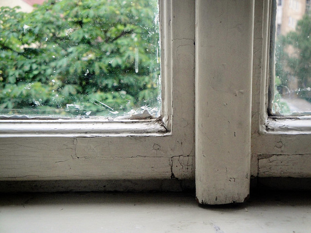 windowsill.