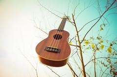 Ukulele (yeeship) Tags: china travel sunset ukulele nex vision:text=0505 vision:outdoor=0797