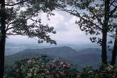 Blue Ridge Parkway, North Carolina (uhuru1701) Tags: trees sky mountains beautiful silhouette clouds america landscape landscapes scenery seasonal northcarolina vegetation americathebeautiful blueridgeparkway publicdomain sceneic