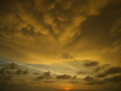 PURE NATURE (Roberta Tura) Tags: travel sunset sky india nature clouds