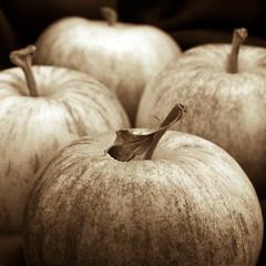 Apples (espion) Tags: blackandwhite stilllife sepia square four leaf symmetry diamond formation apples dried stalk