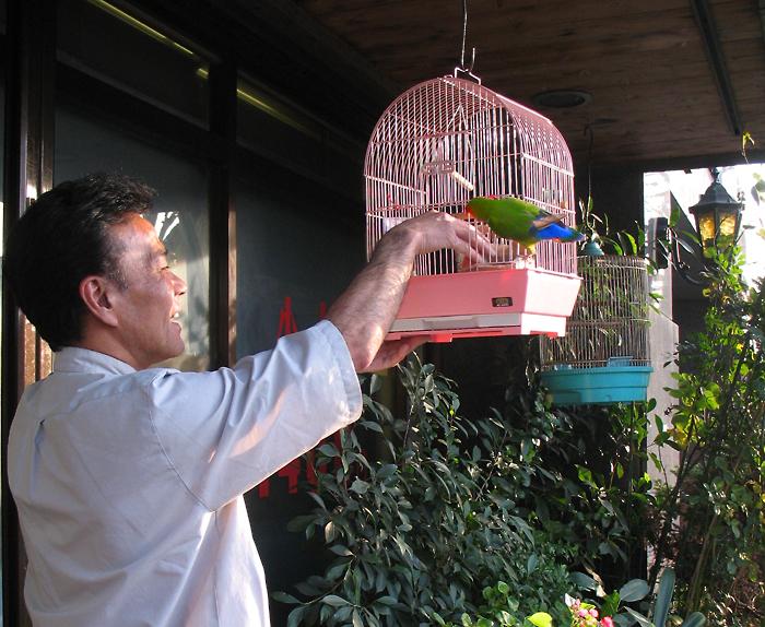 hairdresser&parrot