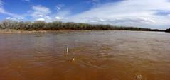 Rio Grande near Los Lunas April 2008