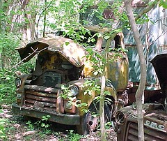 Cabover in woods (boisblanc1954) Tags: old ford abandoned truck vintage rusty junkyard gmc coe cabover
