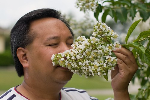 Y2 Day 44 - Stop & Smell The Flowers