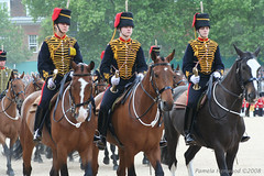 2008 Trooping the Colour 7 (pamela_henwood) Tags: friends 2008 troopingthecolour inyoureyes blueribbonwinner spiritofphotography