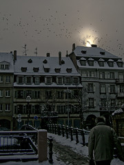 Cold and Flat, Strasbourg, France (Michael Joseph Goldst... etc) Tags: bridge snow france cold birds buildings snowy flock roofs strasbourg alsace strasbourgfrance baroque flockofbirds swarmofbirds alsacefrance snowyafternoon baroquebuildings alsaciansnow lpcityscape lpwinter