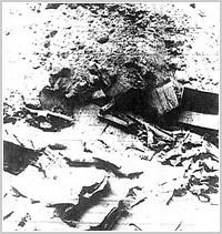atari-burial