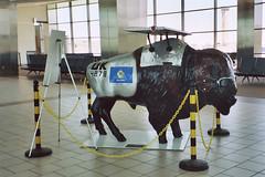 Airplane Buffalo (aimeedars) Tags: airport willrogersinternationalairport aimeedars summer 2004 buffalo spiritofthebuffalo oklahoma ok publicart paintedbuffalo paintedsculpture painted statue