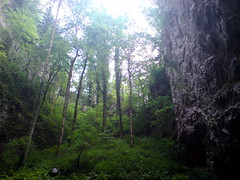 Rakov Skojan (roelfina) Tags: vakantie 2008 sloveni rakovskocjan