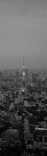 Tokyo 2008 - Roppongi Hills - Tokyo City View (1)