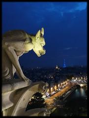 Nocturno - París