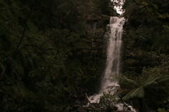 Oz3 258 (Gillian in Brussels) Tags: nature coast waterfall nationalpark australia shore greatoceanroad erskinefalls greatotwaynationalpark