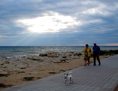 Walking under the torn heaven (Anastassiya Bergem) Tags: light dog clouds dark kazakhstan aqtau свет собака море лучи aktau пес тучи казахстан mangistau thebestofday gününeniyisi актау мангистау ненастье raysненастье