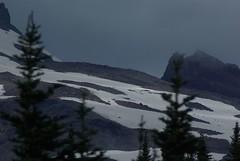 2008-07-31 Mt Ranier (17)