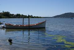 Barco na Lagoa da Conceição