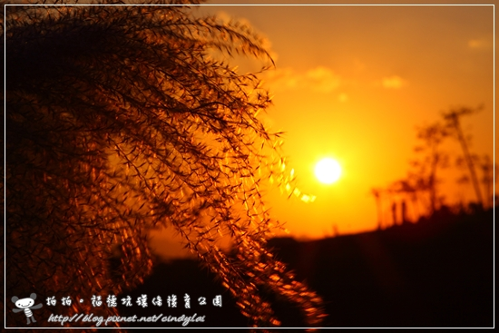 20081129_50D_091