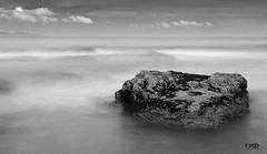Stone at the Beach (Monika Ostermann) Tags: ocean vacation bw beach water monochrome stone blackwhite sand aplusphoto monochromeaward