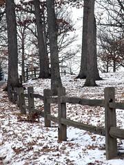 Snowy Rail Fence (Hammer51012) Tags: park wood fence geotagged lafayette indiana rail olympus murdock onlythebestare sp570uz