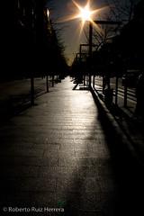 Shiny in a cold afternoon (Berts @idar) Tags: contraluz calle zaragoza paseo efs1855mmf3556 espaa canoneos400ddigital paseoconstitucin