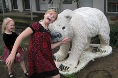 Killer Bear on the Loose